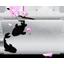 Download white folder Icon