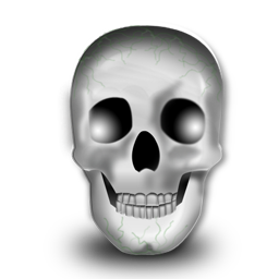 Head-256
