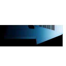 Suivant Bleu