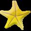 Marine star Icon