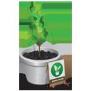 Plant-128