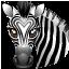 Zebra-64