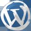 Wordpress hand drawned Icon
