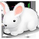 Bunny-128