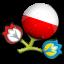 Euro 2012 Poland Icon