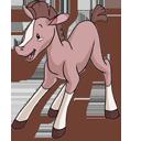 Foal-128