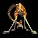 Melman Madagascar