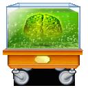 Administrator Brain