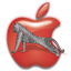Apple Leopard icon