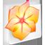 Illustrator CS2 icon