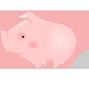 Pig zodiac-128