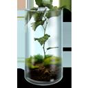 Mossy Terrarium-128