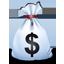 Money Bag-64
