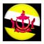 Flag of Brunei icon