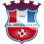 Otelul Galati Logo Icon