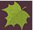 Palmately Leaf-48