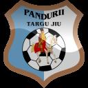 Pandurii Targu Jiu Logo-128
