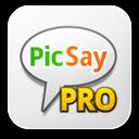 Picsaypro