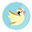 Pidgey Twitter-32