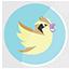Pidgey Twitter icon