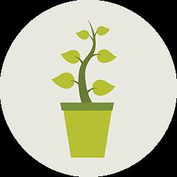 Plant Icon Download Flat Round Icons Iconspedia