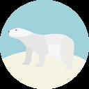 Polar Bear-128