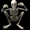 Skeleton-128