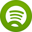 Spotifiy flat circle icon