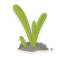 Spring Plants icon