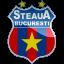 Steaua Bucuresti Logo Icon
