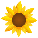 Sunflower-128