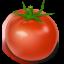 Tomato Icon