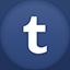 Tumblr flat circle icon