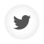Twitter Bird white round icon