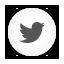 Twitter Bird white round icon