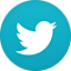 Twitter flat circle icon