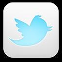 Twitter Light