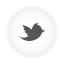 Twitter white round icon