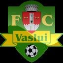 Vaslui Logo-128