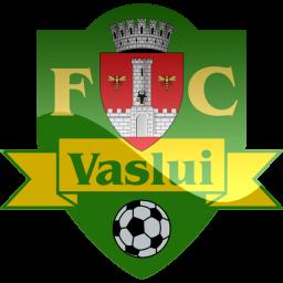 Vaslui Logo
