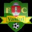 Vaslui Logo Icon