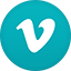 Vimeo flat circle icon