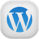 Wordpress Light-128
